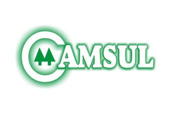 CAMSUL